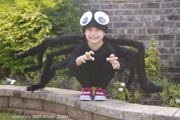 Little boy in spider costume.
